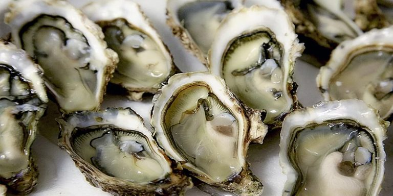 How Long Do Oysters Last