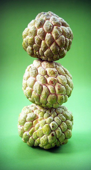 stacked custard apple