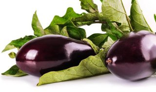 how long does eggplant last