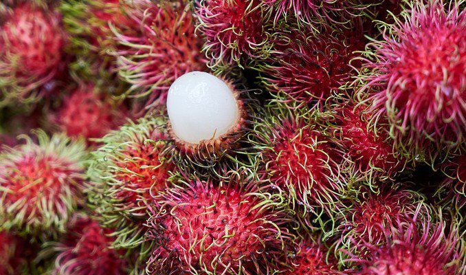 How Long Does Rambutan Last