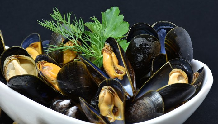 can you freeze mussels