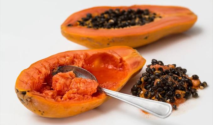 storing papaya