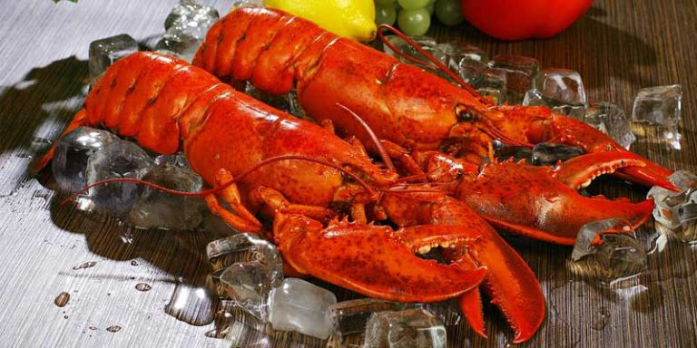 Can You Freeze Lobster