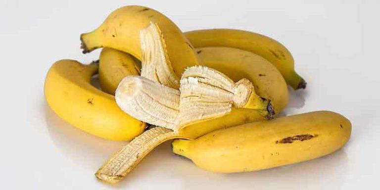 Can You Refrigerate Bananas