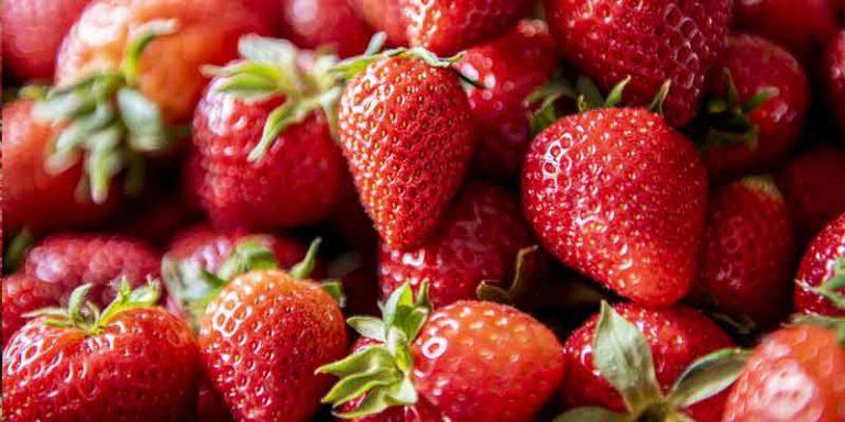 Do Strawberries Go Bad