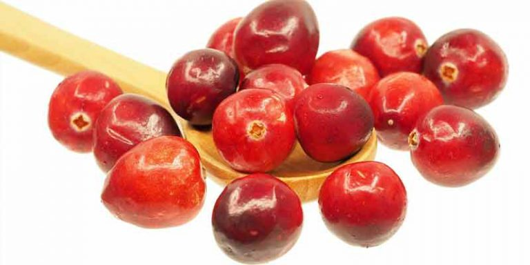 Do Cranberries Go Bad