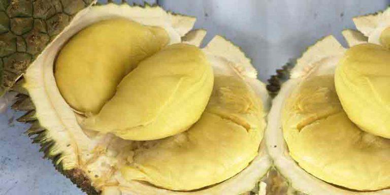 Can you freeze durian
