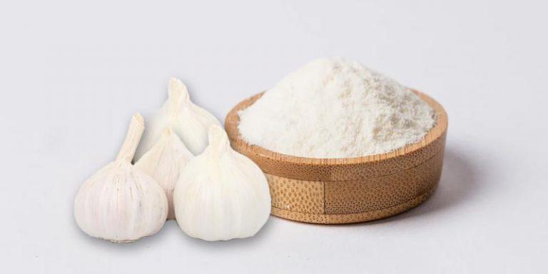 Does Garlic Powder Go Bad