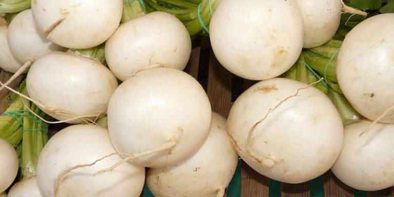 Can You Freeze Turnips