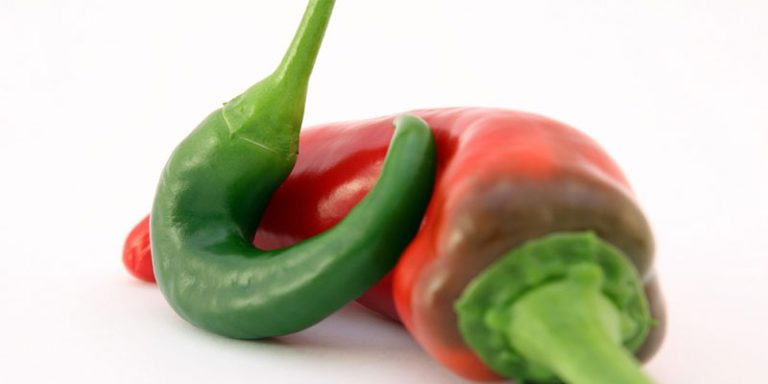 Do Peppers Need To Be Refrigerated